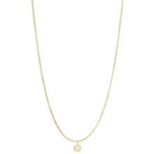 Zanny 18K Gold Plated Cirkel hanger gold plated ketting